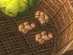 ironwoodnuts.jpg
